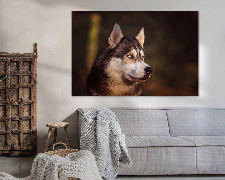 Beispiel: Sibirischer Husky von Petra Lakerveld