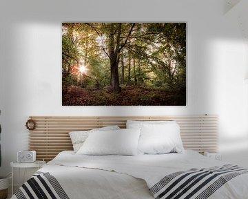 Sonnenaufgang im Dorm von Sebastian Petersen