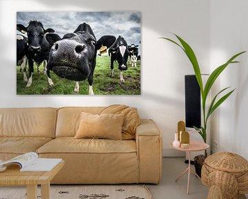 De koe van Boer Janmaat, Barwoutswaarder van paul snijders