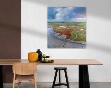 Texel - De Schorre - Rode Zeekraal 02 van Texel360Fotografie Richard Heerschap