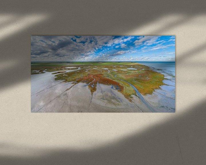 Impression: Texel - Le rauque - Red Marsh samphire 07 sur Texel360Fotografie Richard Heerschap