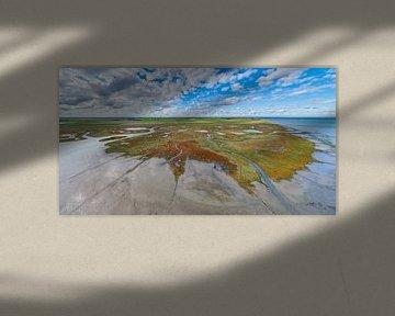 Texel - De Schorre - Rode Zeekraal 07 van Texel360Fotografie Richard Heerschap