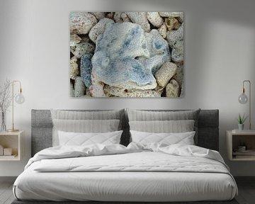 Koralle von Maurice Dawson