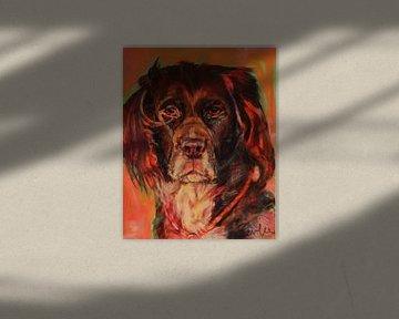 Hund Heidewachtel von Liesbeth Serlie