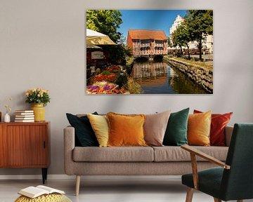 Rood Huisje in Wismar, Duitsland van Adelheid Smitt