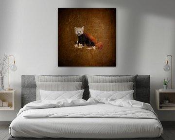 Roter Panda von Lucia