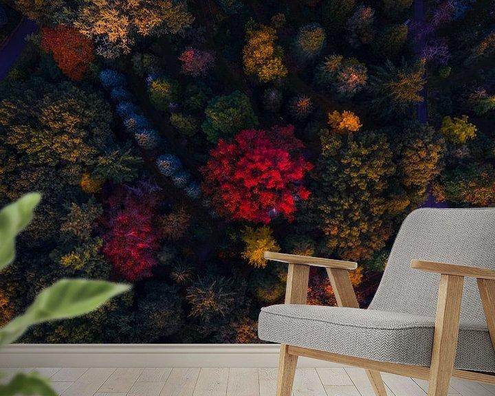 Sfeerimpressie behang: Herfst van boven van Thomas Bartelds