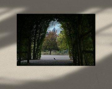 Blick durch einen dunklen Laubengang von der Hainbuche auf den Turm des Schweriner Schlosses, gewähl von Maren Winter