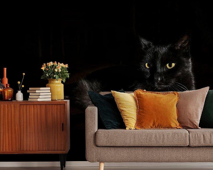 Sfeerimpressie behang: Zwarte kat met geelgroene ogen ligt op een donkere achtergrond, zijdelings licht, kopieerruimte, ges van Maren Winter