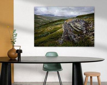 Noorse hoogvlakte  van Pieter Gordijn