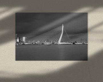 Die Skyline von Rotterdam in Schwarz-Weiß
