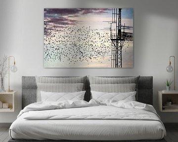 Migration des oiseaux au pôle électrique sur Heike Hultsch