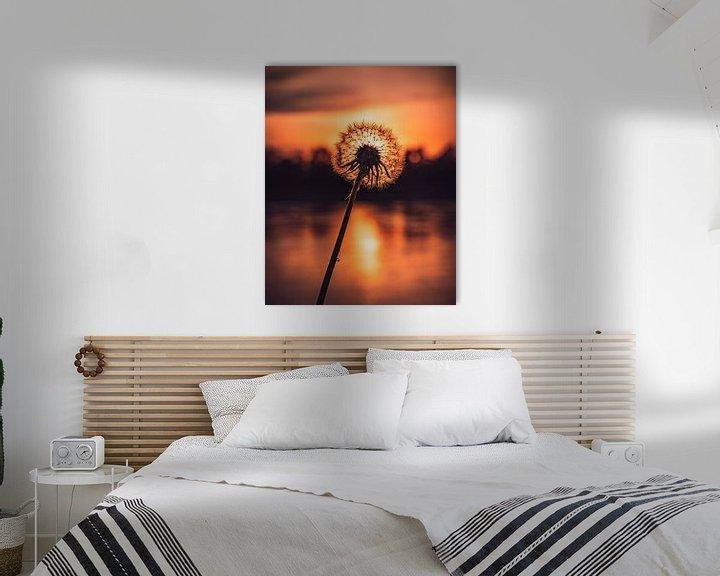 Beispiel: Pusteblume im Abendlicht von Marcus Lanz