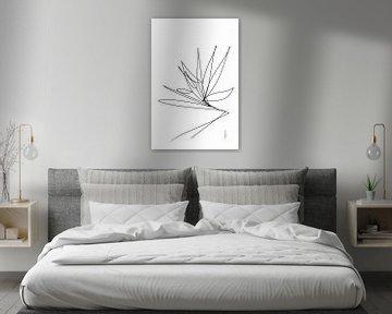 Paradiesvogel-Blüte von Ankie Kooi