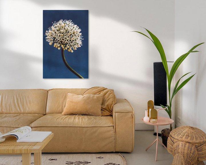 Sfeerimpressie: Allium, night blue van Aminda