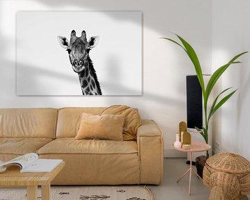 Giraffenporträt schwarz-weiß von Amy Huibregtse