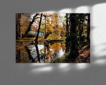 Autumn scene von Andreas Wemmje