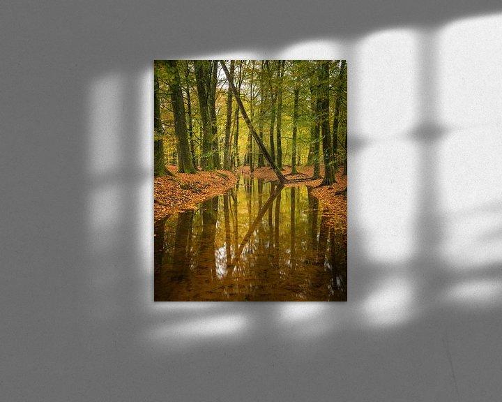 Beispiel: Ihre Reflexionen von Raoul Baart