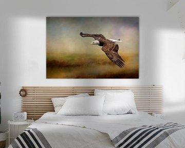 Seeadler über einer Landschaft mit Wasser von Diana van Tankeren