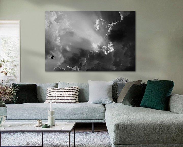 Sfeerimpressie: Vlieg in zwart-wit naar de zon. van Pierre Timmermans