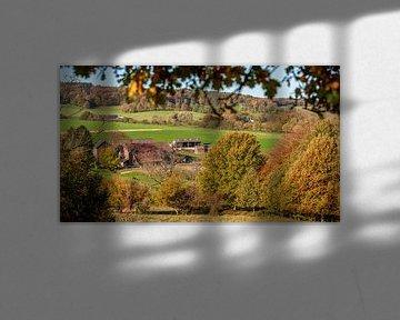 Couleurs d'automne sur les collines du sud du Limbourg