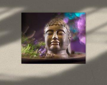Boeddha hoofd van Wim van Berlo