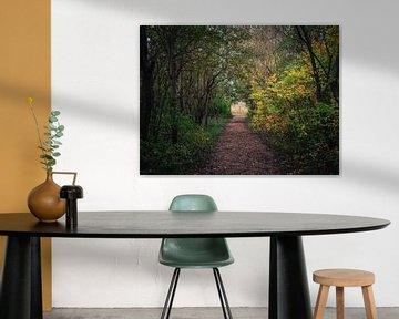 Tunnel der Natur von Joren van den Bos