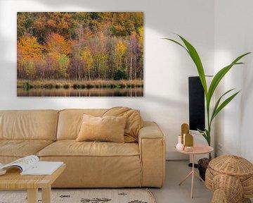 Herfst van Richard Gilissen