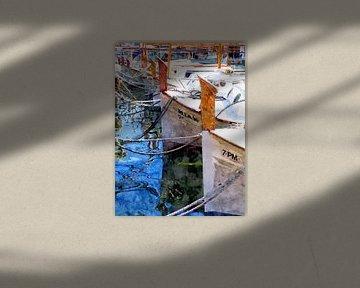 Fishing boats in the harbor - Mallorca