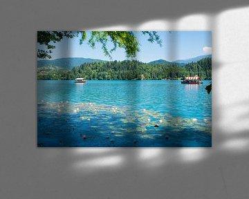 Der zauberhafte See von Bled in Slowenien