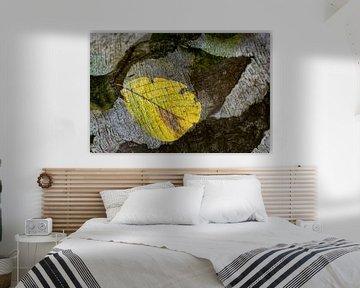 Boomblad op schors  Art van Henk Elshout