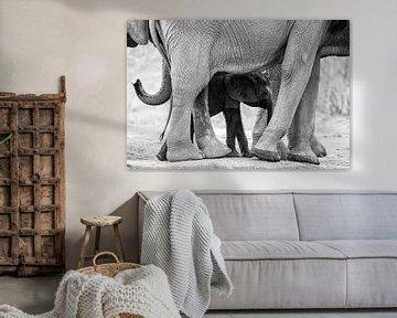 Klein und groß von Anja Brouwer Fotografie