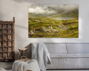 Mistige dag, een groen landschap met een meertje in Noorwegen van Karijn | Fine art Natuur en Reis Fotografie