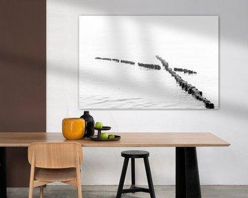 Houten fontein in water in zwart-wit van Tilo Grellmann | Photography