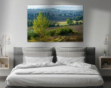 Heuvels rond Pienza van Filip Staes
