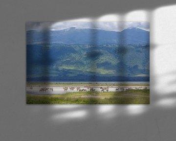 Zebra's pootjebaden in krater van Anja Brouwer Fotografie