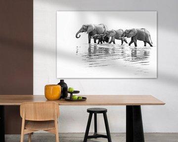 Trinkende Elefanten im Fluss in Sambia von Anja Brouwer Fotografie
