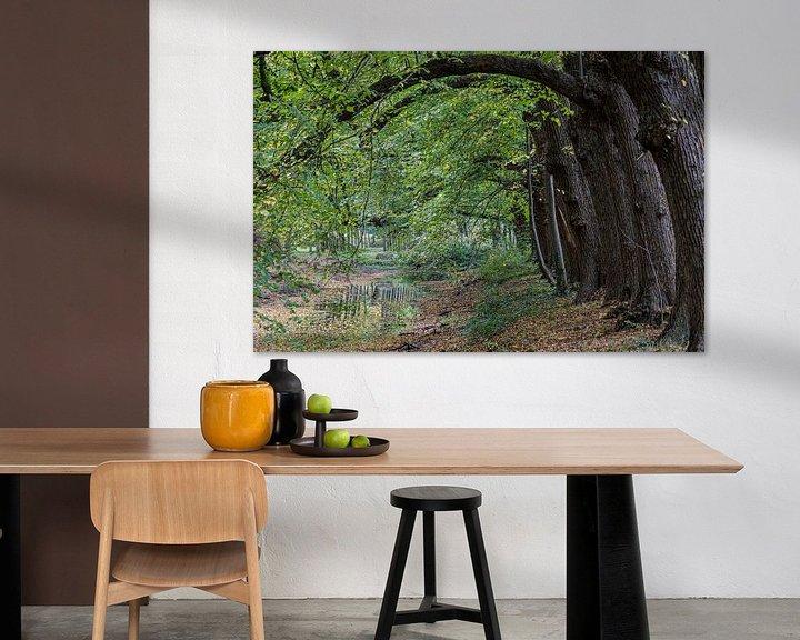 Beispiel: Gebogene Herbstbäume von Anjo ten Kate