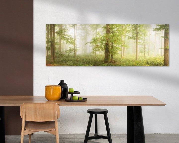 Sfeerimpressie: Beuken in de mist van Tobias Luxberg
