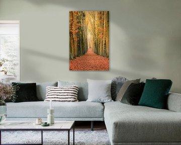 Eine Mauer aus Bäumen von Max ter Burg Fotografie