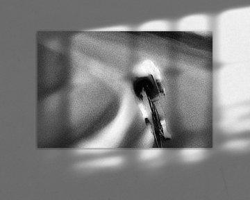 Der anmutige Radfahrer von Studio Koers
