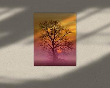 Golden sunrise van Halma Fotografie