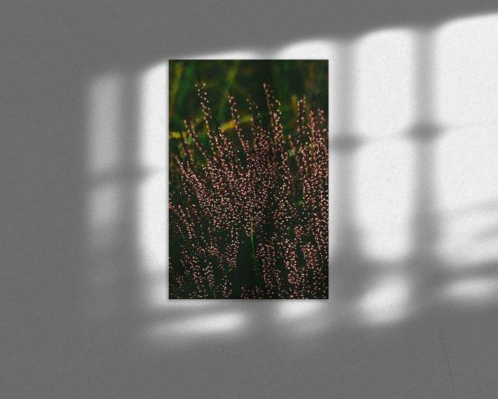 Sfeerimpressie: Heide van Kelly Kutterik Photography