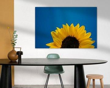 Sonnenblume von Marjolijn Maljaars