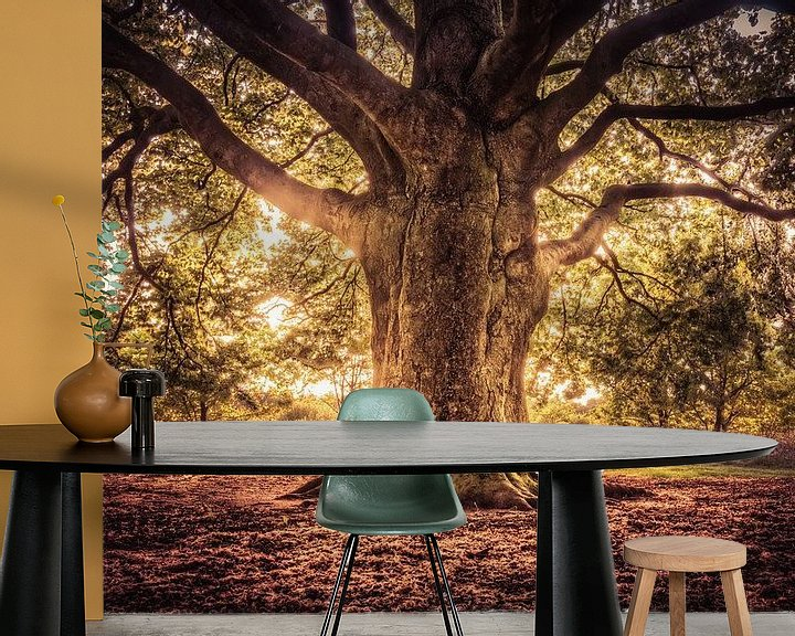 Beispiel fototapete: Tree of Life von Michiel Buijse