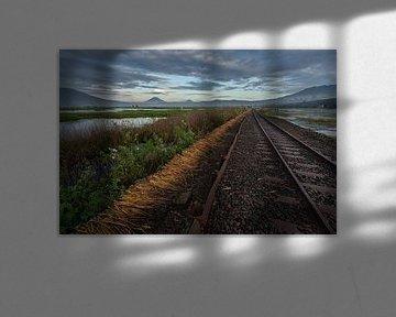 De oude spoorweg in Ambarawa, Midden Java van Anges van der Logt