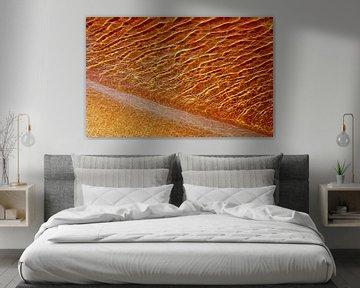 Gold Rush (Gouden strand) van Caroline Lichthart
