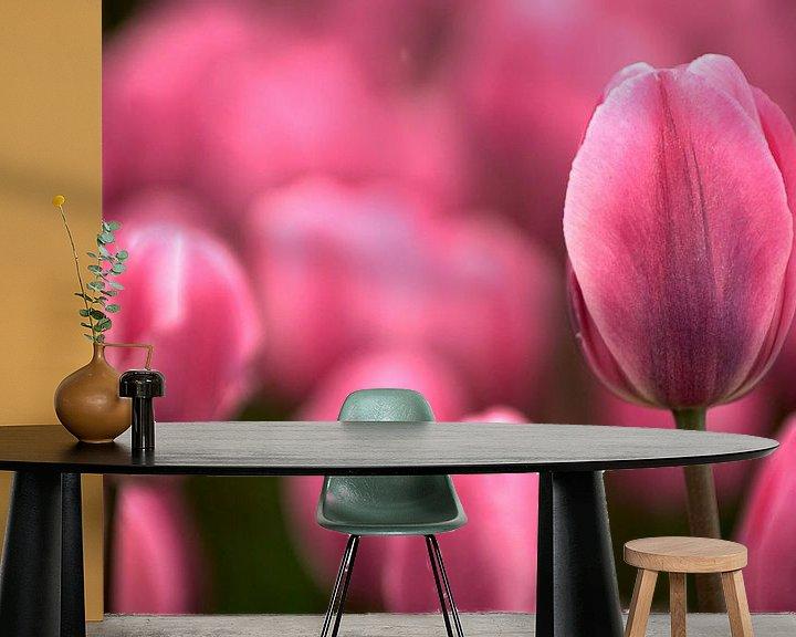 Sfeerimpressie behang: Tulip pink echoes van Mike Bing