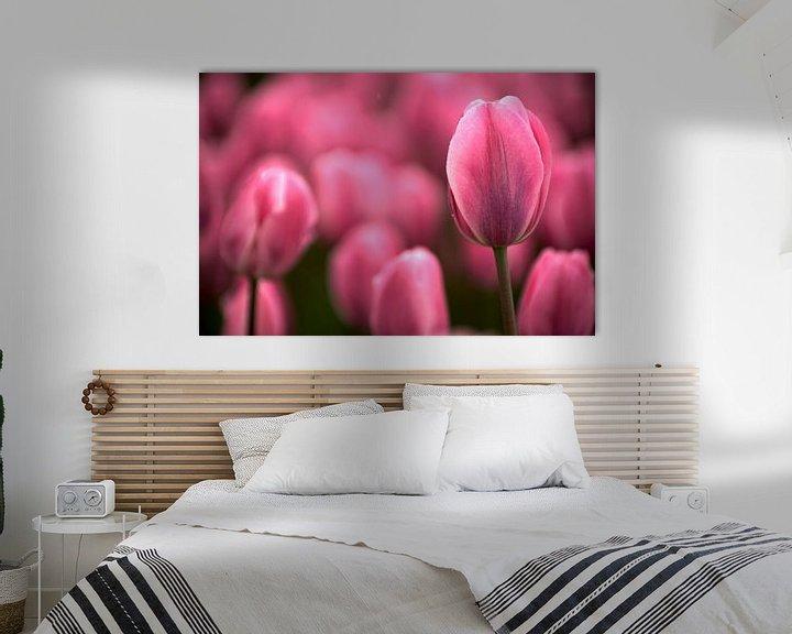 Sfeerimpressie: Tulip pink echoes van Mike Bing