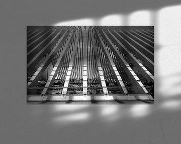 Treinstation GUILLEMINS LUIK von M  van den Hoven